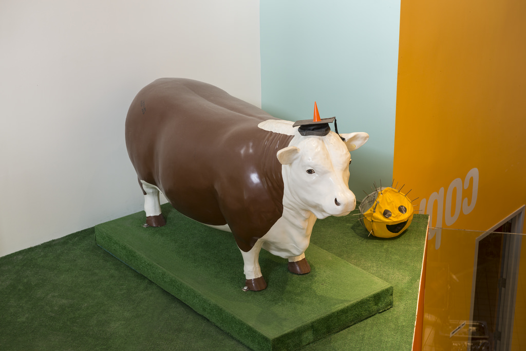 Hackers placed a life-size cow 在 top of the Great Dome